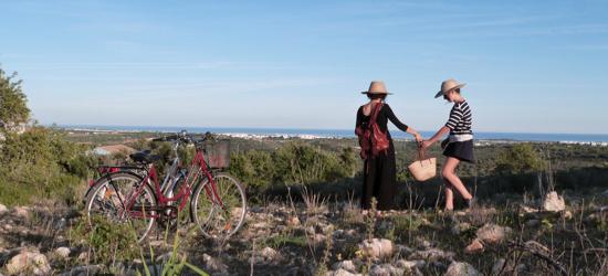 passeio de bicicleta com picnic
